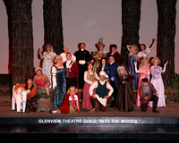 Glenview Theater Guild